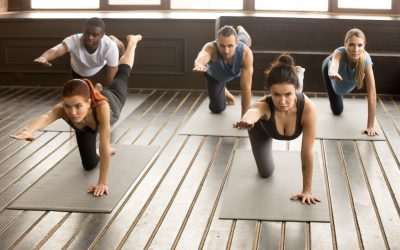 lower back exercises   LCR Health