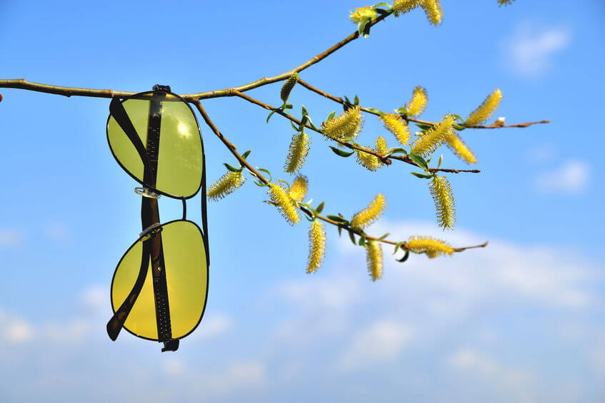Do Blue Light Blocking Glasses Work?