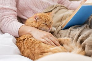 rest reading with cat | LCR Health