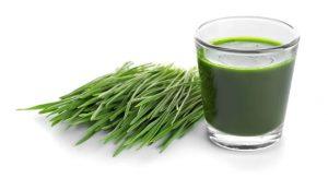 wheatgrass shot   LCR Health