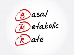 basal metabolic rate | LCR Health