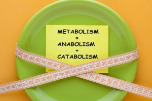 messed up metabolism | LCR Health